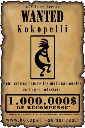 Cliquez ici pour voir le site de Kokopelli